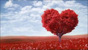 Valentine's Day marketing campaign