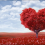 Valentine's Day Marketing Isn't Just For Couples