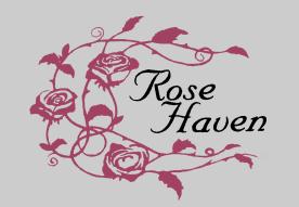 Volunteer Focus: Rose Haven